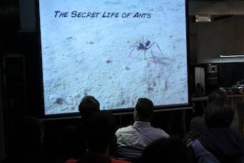 The Secret life of Ants predavanje